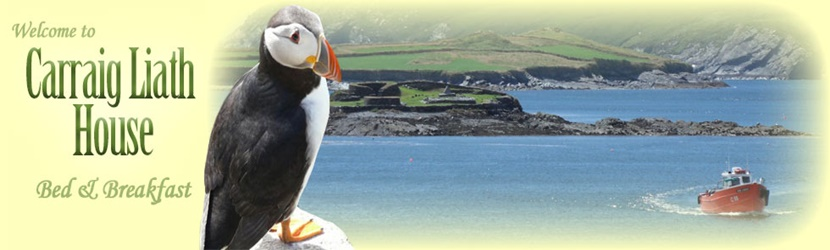 Valentia Island Accommodation with Carraig Liath House Bed and Breakfast